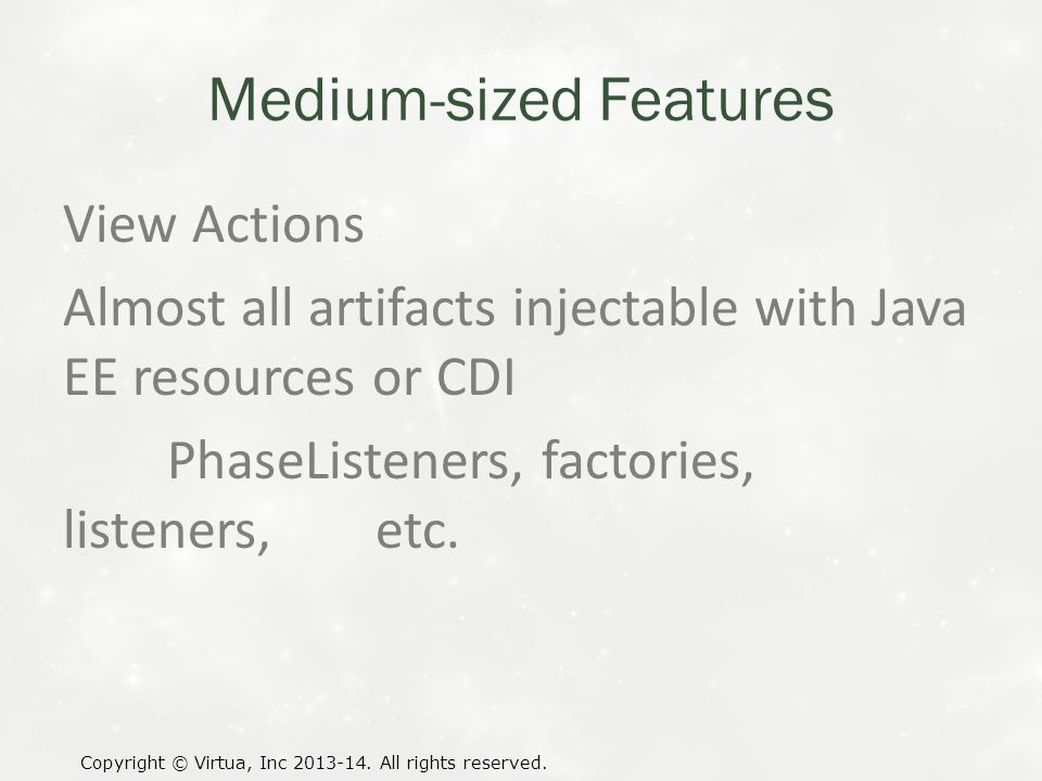 Medium-sized Features View Actions Almost all artifacts injectable with Java EE resources or CDI PhaseListeners, factories, listeners, etc.