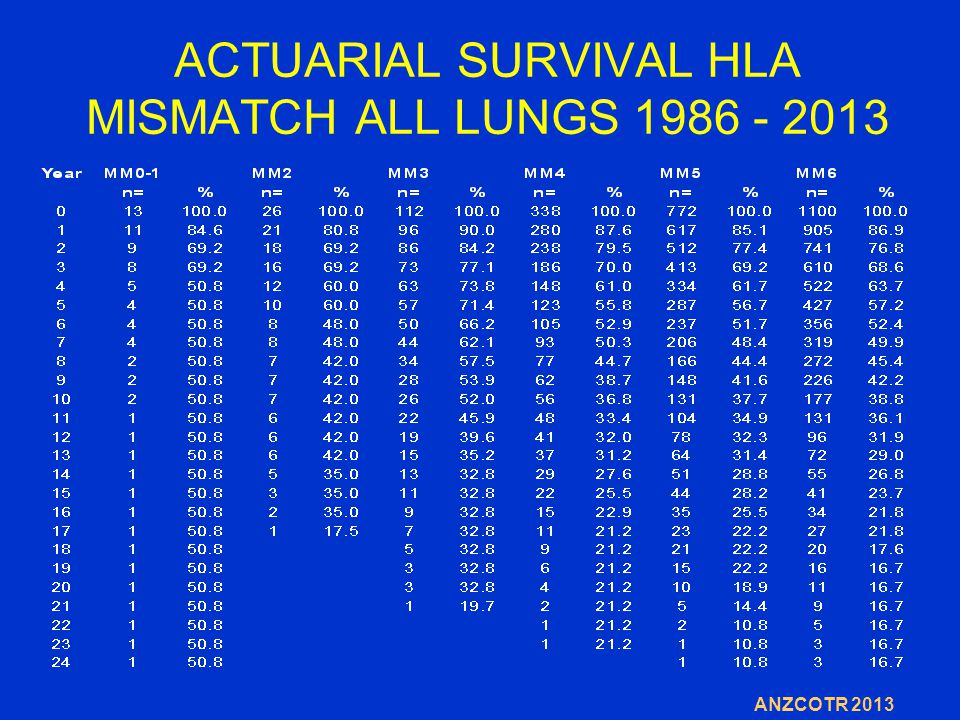 ACTUARIAL SURVIVAL HLA MISMATCH ALL LUNGS 1986 - 2013 ANZCOTR 2013
