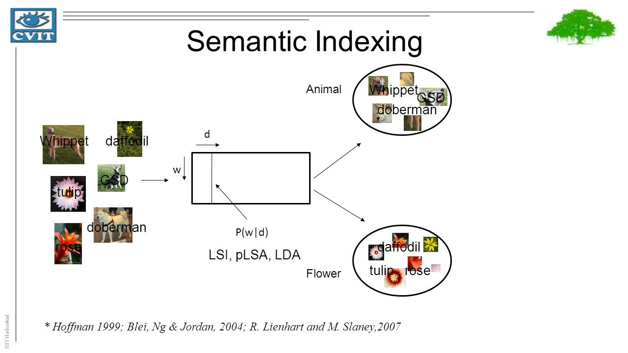 IIIT Hyderabad Semantic Indexing w d P(w|d) * Hoffman 1999; Blei, Ng & Jordan, 2004; R. Lienhart and M. Slaney,2007 Animal Flower Whippetdaffodil tuli