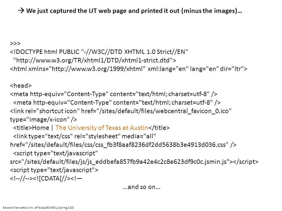 >>> <!DOCTYPE html PUBLIC -//W3C//DTD XHTML 1.0 Strict//EN http://www.w3.org/TR/xhtml1/DTD/xhtml1-strict.dtd > Home | The University of Texas at Austin <!— …and so on…  We just captured the UT web page and printed it out (minus the images)… Edward Marcotte/Univ.