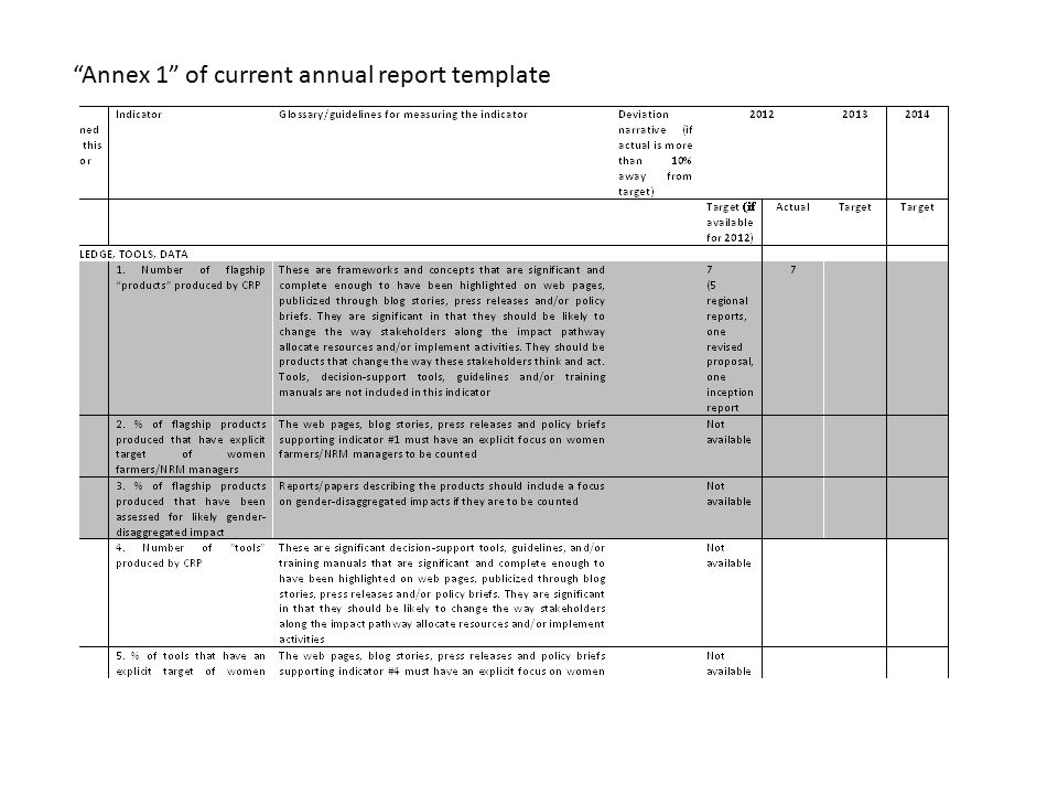Annex 1 of current annual report template