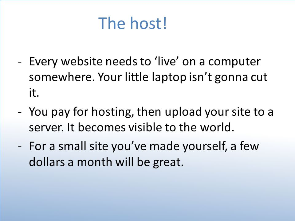 The host. -Every website needs to 'live' on a computer somewhere.