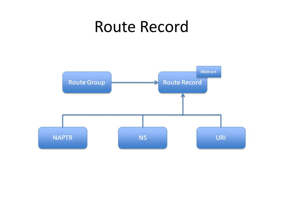 Route Record Route Group Route Record NAPTR NS URI Abstract