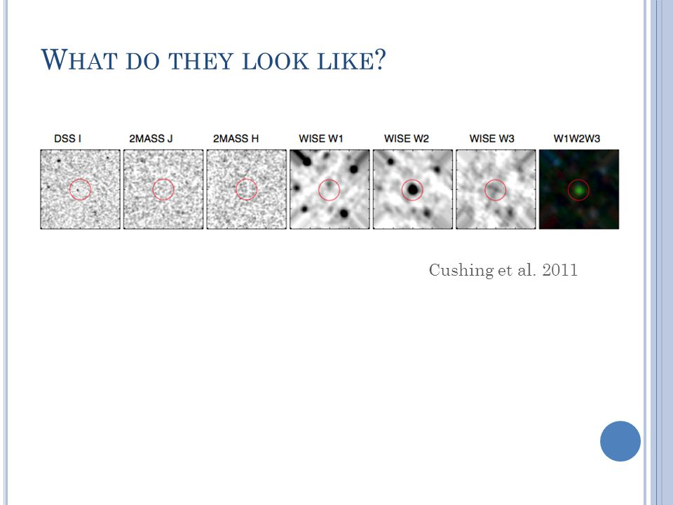W HAT DO THEY LOOK LIKE Cushing et al. 2011