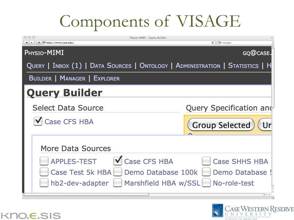 Components of VISAGE