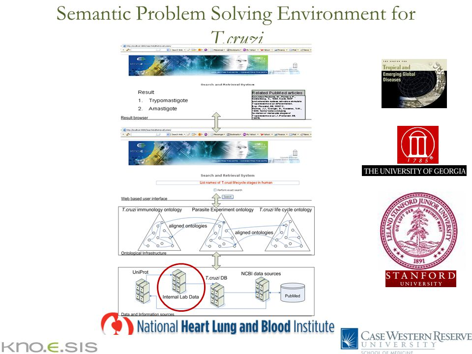 Semantic Problem Solving Environment for T.cruzi