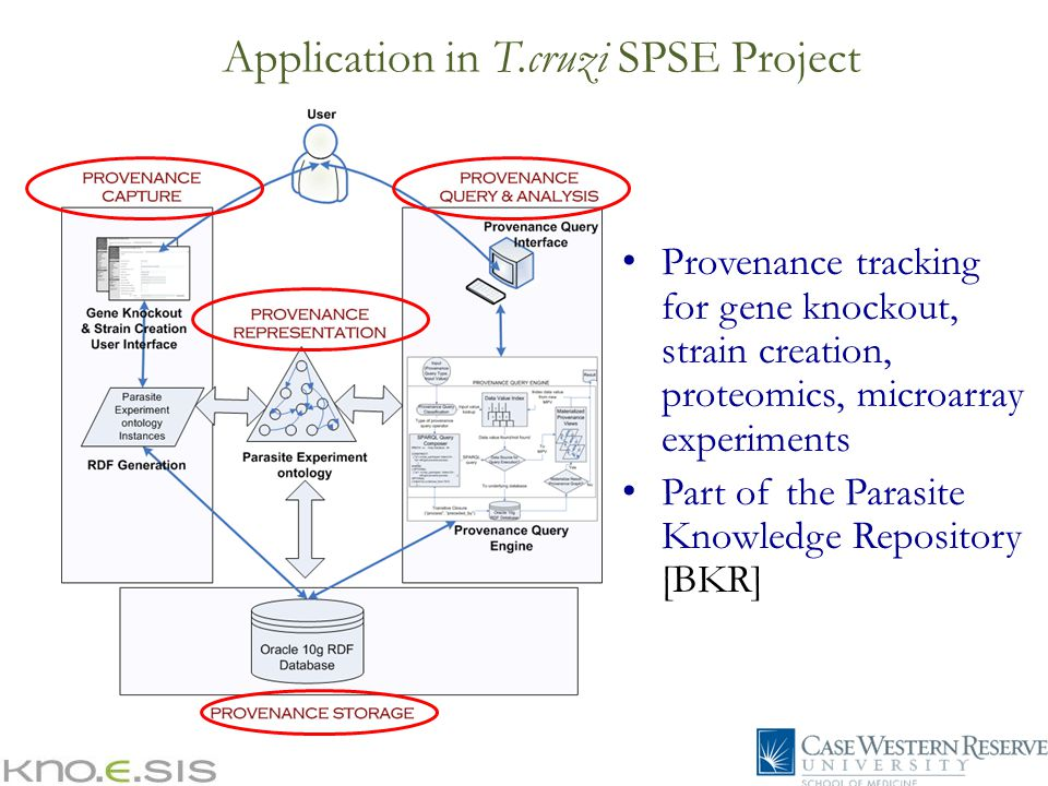 Application in T.cruzi SPSE Project Provenance tracking for gene knockout, strain creation, proteomics, microarray experiments Part of the Parasite Knowledge Repository [BKR]