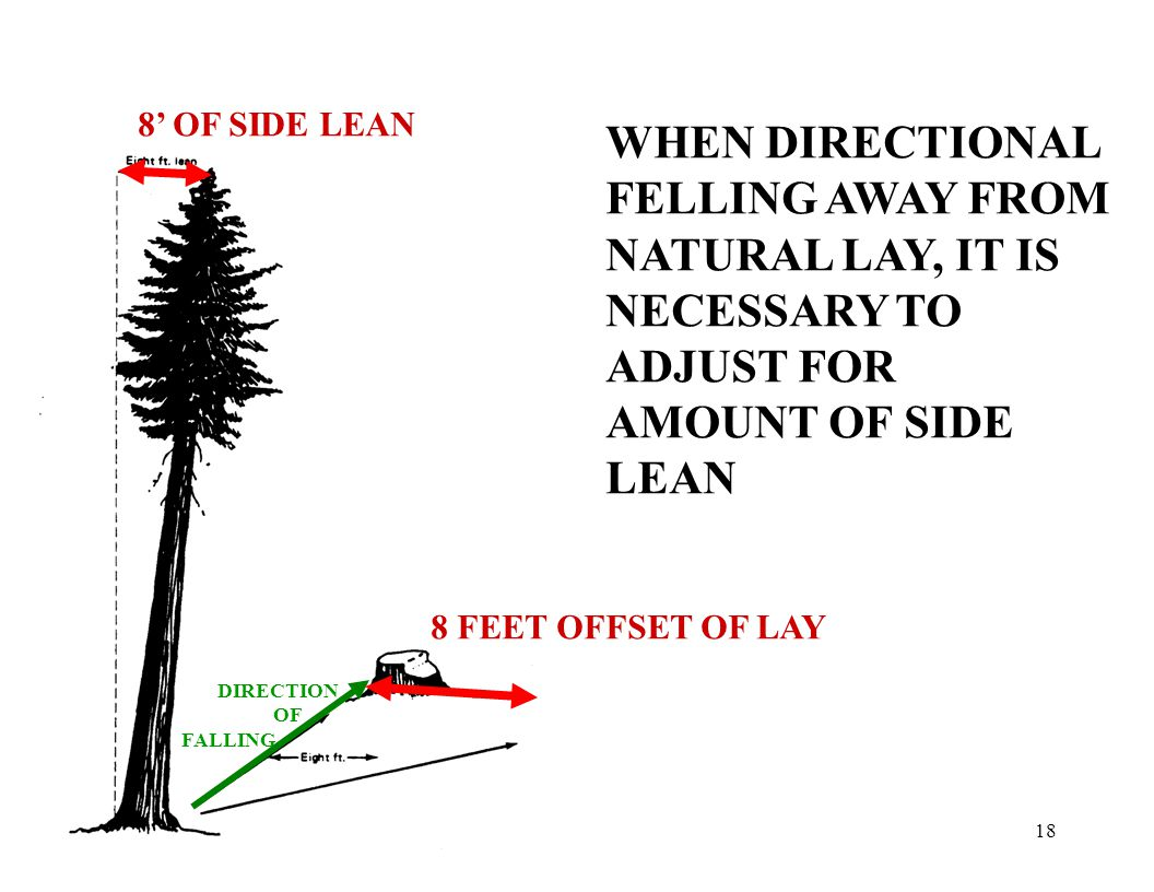 18 8' OF SIDE LEAN 8 FEET OFFSET OF LAY DIRECTION OF FALLING WHEN DIRECTIONAL FELLING AWAY FROM NATURAL LAY, IT IS NECESSARY TO ADJUST FOR AMOUNT OF SIDE LEAN