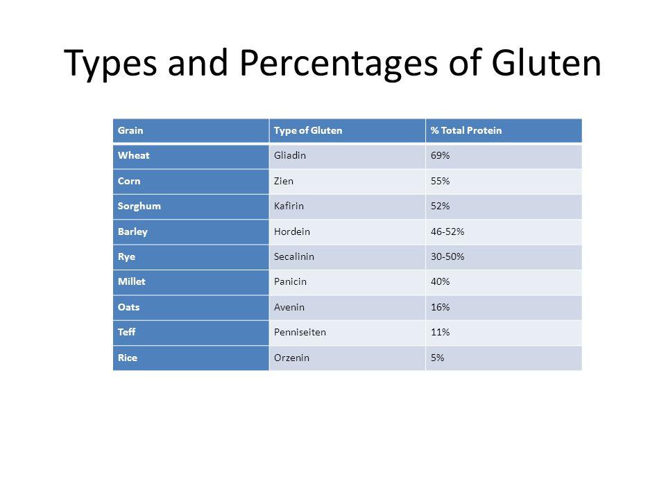 Types and Percentages of Gluten GrainType of Gluten% Total Protein WheatGliadin69% CornZien55% SorghumKafirin52% BarleyHordein46-52% RyeSecalinin30-50