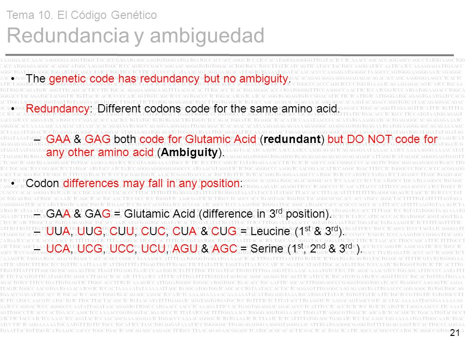 21 The genetic code has redundancy but no ambiguity. Redundancy: Different codons code for the same amino acid. –GAA & GAG both code for Glutamic Acid