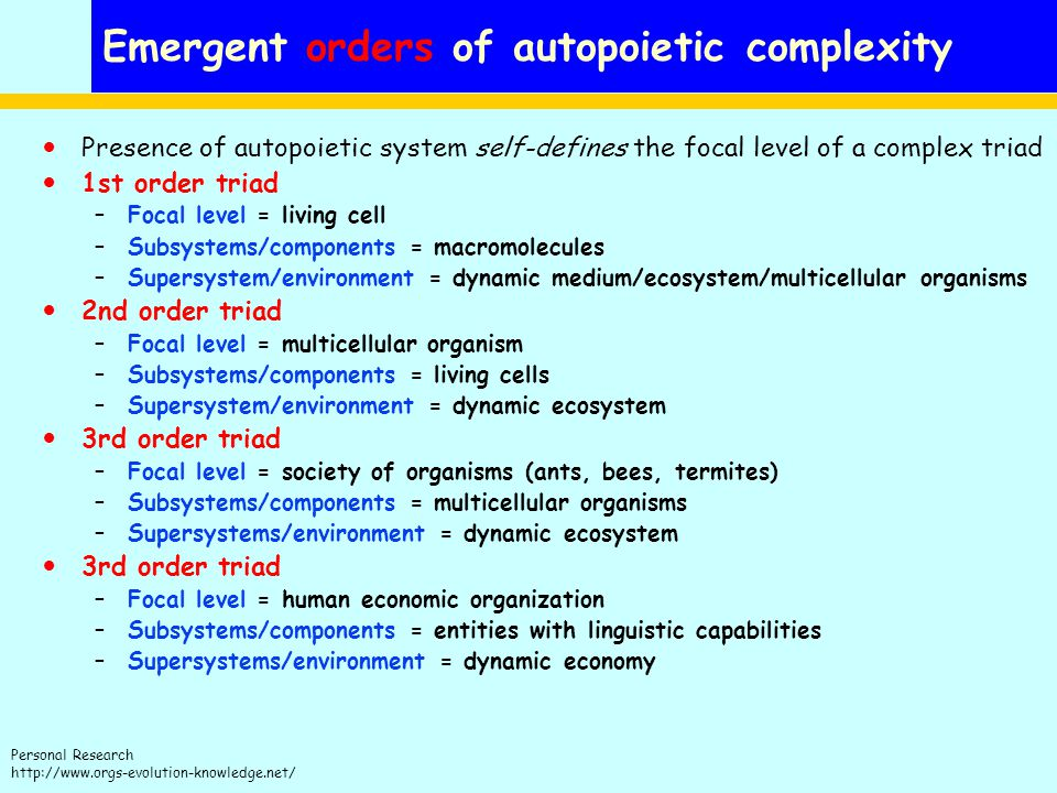 Personal Research http://www.orgs-evolution-knowledge.net/ Emergent orders of autopoietic complexity Presence of autopoietic system self-defines the focal level of a complex triad 1st order triad –Focal level = living cell –Subsystems/components = macromolecules –Supersystem/environment = dynamic medium/ecosystem/multicellular organisms 2nd order triad –Focal level = multicellular organism –Subsystems/components = living cells –Supersystem/environment = dynamic ecosystem 3rd order triad –Focal level = society of organisms (ants, bees, termites) –Subsystems/components = multicellular organisms –Supersystems/environment = dynamic ecosystem 3rd order triad –Focal level = human economic organization –Subsystems/components = entities with linguistic capabilities –Supersystems/environment = dynamic economy