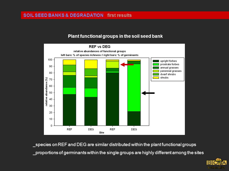 SOIL SEED BANKS & DEGRADATIONfirst results Plant functional groups in the soil seed bank _species on REF and DEG are similar distributed within the plant functional groups _proportions of germinants within the single groups are highly different among the sites