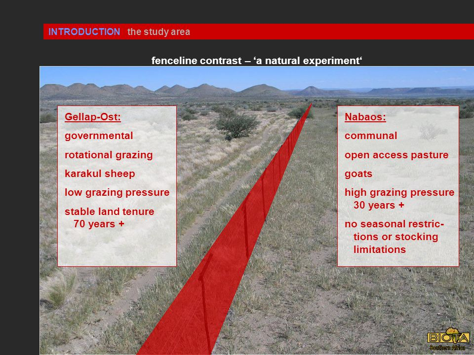 INTRODUCTION Gellap-Ost: governmental rotational grazing karakul sheep low grazing pressure stable land tenure 70 years + Nabaos: communal open access pasture goats high grazing pressure 30 years + no seasonal restric- tions or stocking limitations the study area fenceline contrast – 'a natural experiment'