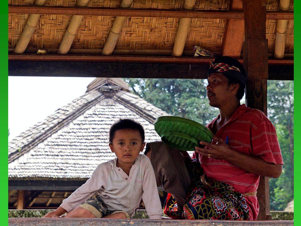 30.01.2009.Balinese people11 An entrance door in Penglipuran