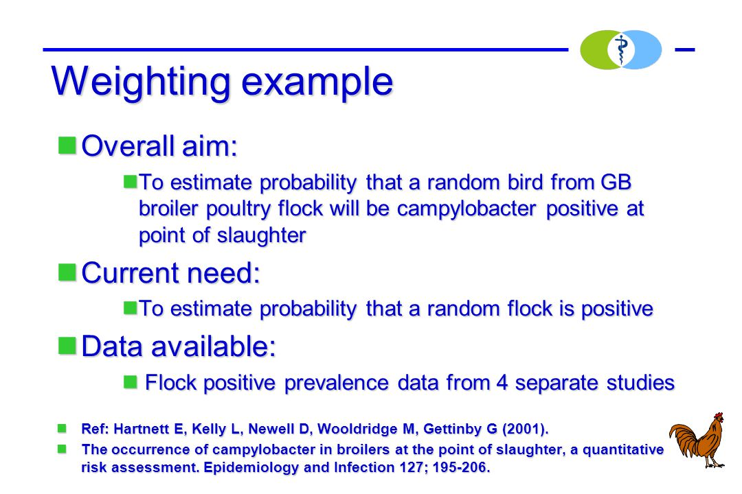 Weighting example Overall aim: Overall aim: To estimate probability that a random bird from GB broiler poultry flock will be campylobacter positive at point of slaughter To estimate probability that a random bird from GB broiler poultry flock will be campylobacter positive at point of slaughter Current need: Current need: To estimate probability that a random flock is positive To estimate probability that a random flock is positive Data available: Data available: Flock positive prevalence data from 4 separate studies Flock positive prevalence data from 4 separate studies Ref: Hartnett E, Kelly L, Newell D, Wooldridge M, Gettinby G (2001).