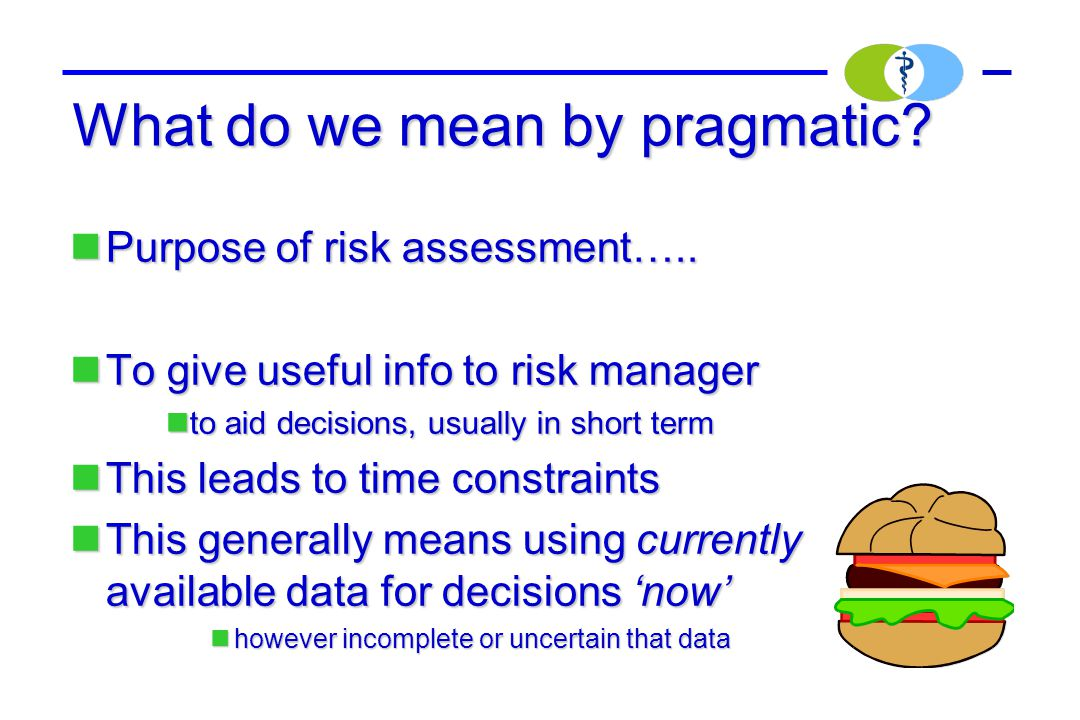 What do we mean by pragmatic? Purpose of risk assessment….. Purpose of risk assessment….. To give useful info to risk manager To give useful info to r