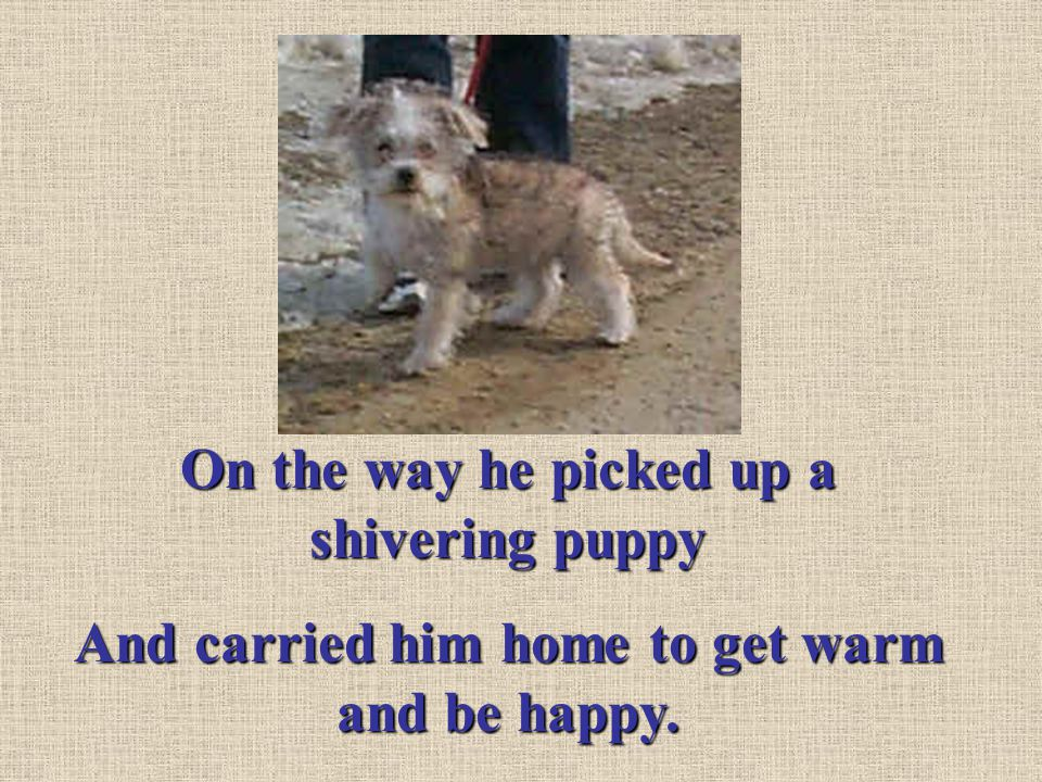 On the way he picked up a shivering puppy And carried him home to get warm and be happy.