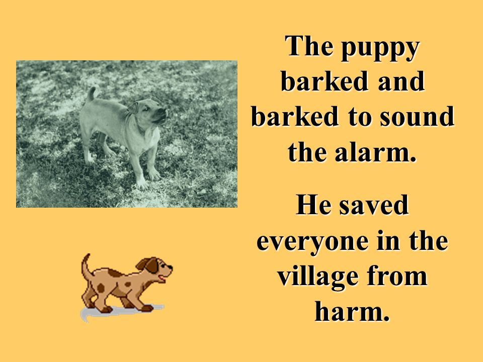 The puppy barked and barked to sound the alarm. He saved everyone in the village from harm.