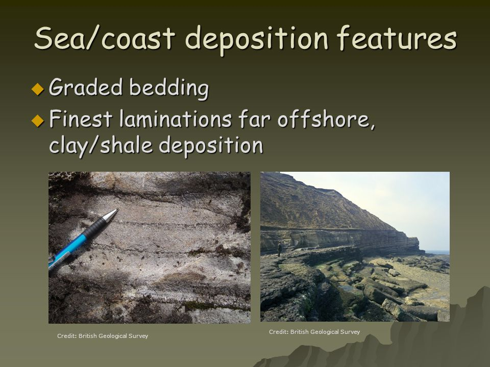 Sea/coast deposition features  Graded bedding  Finest laminations far offshore, clay/shale deposition Credit: British Geological Survey
