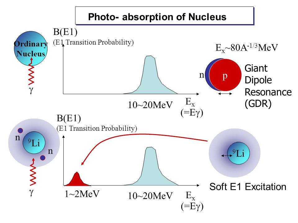 Ordinary Nucleus Photo- absorption of Nucleus p n Giant Dipole Resonance (GDR) E x ~80A -1/3 MeV ExEx B(E1) (E1 Transition Probability)  (=E  9 Li n n  ExEx (=E  B(E1) (E1 Transition Probability) 10~20MeV 1~2MeV 9 Li Soft E1 Excitation