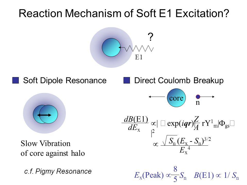 E1 . Reaction Mechanism of Soft E1 Excitation.
