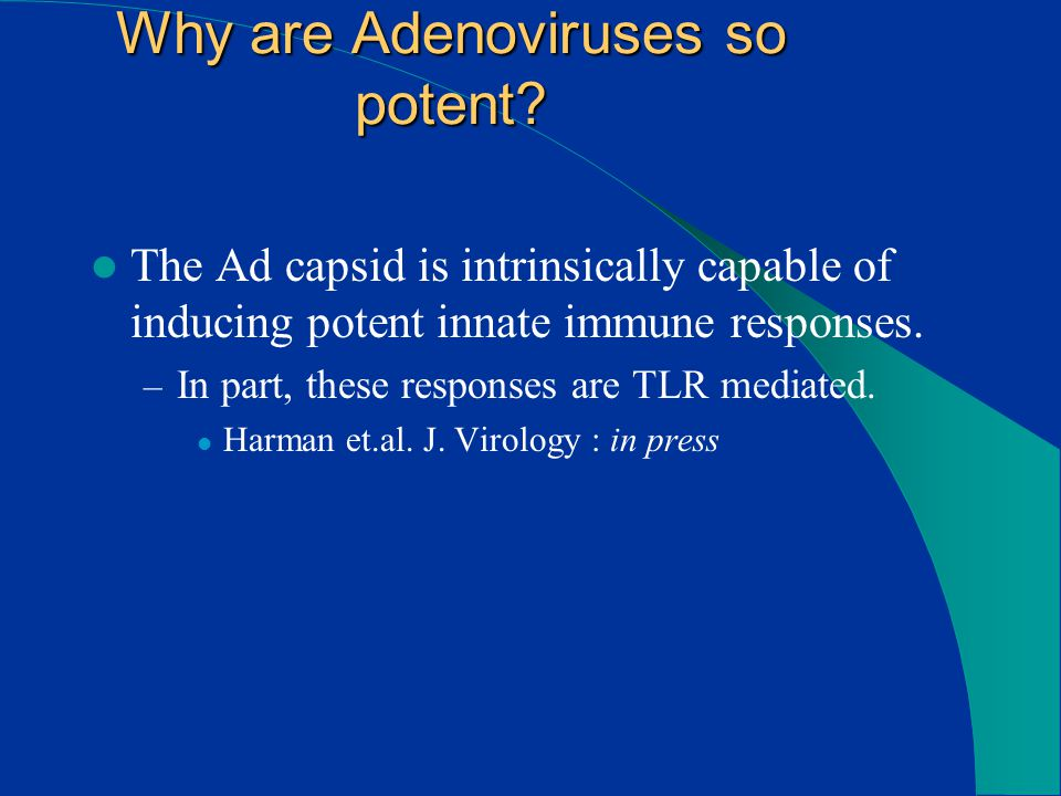 Why are Adenoviruses so potent.