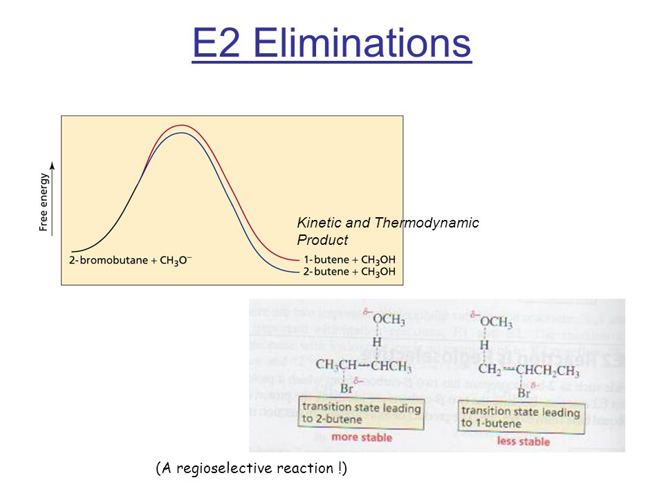 E2 Eliminations Kinetic and Thermodynamic Product (A regioselective reaction !)