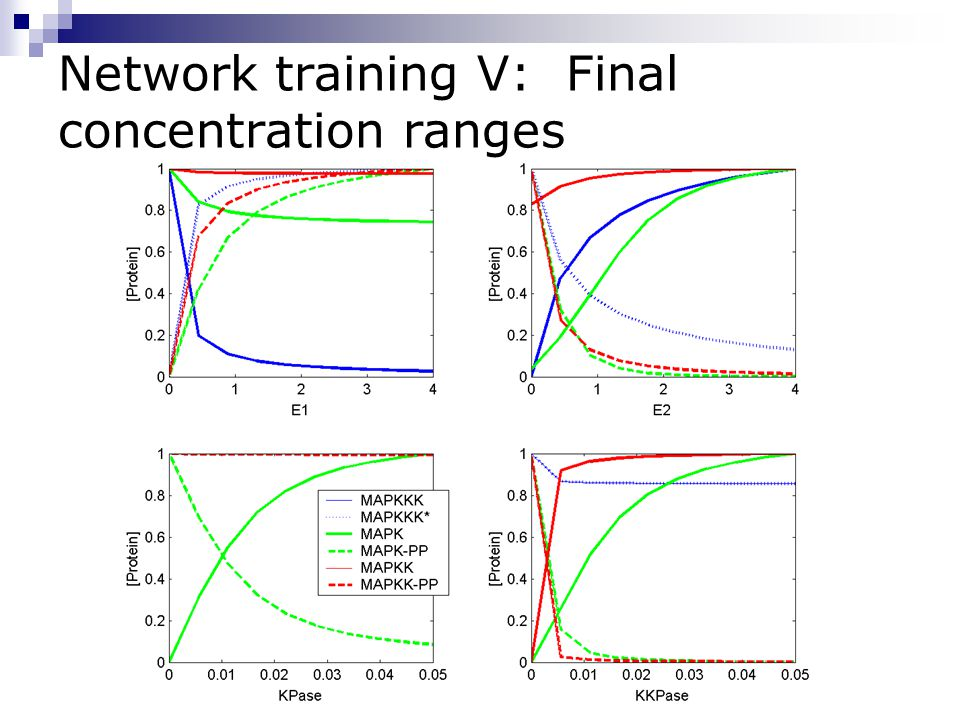 Network training V: Final concentration ranges