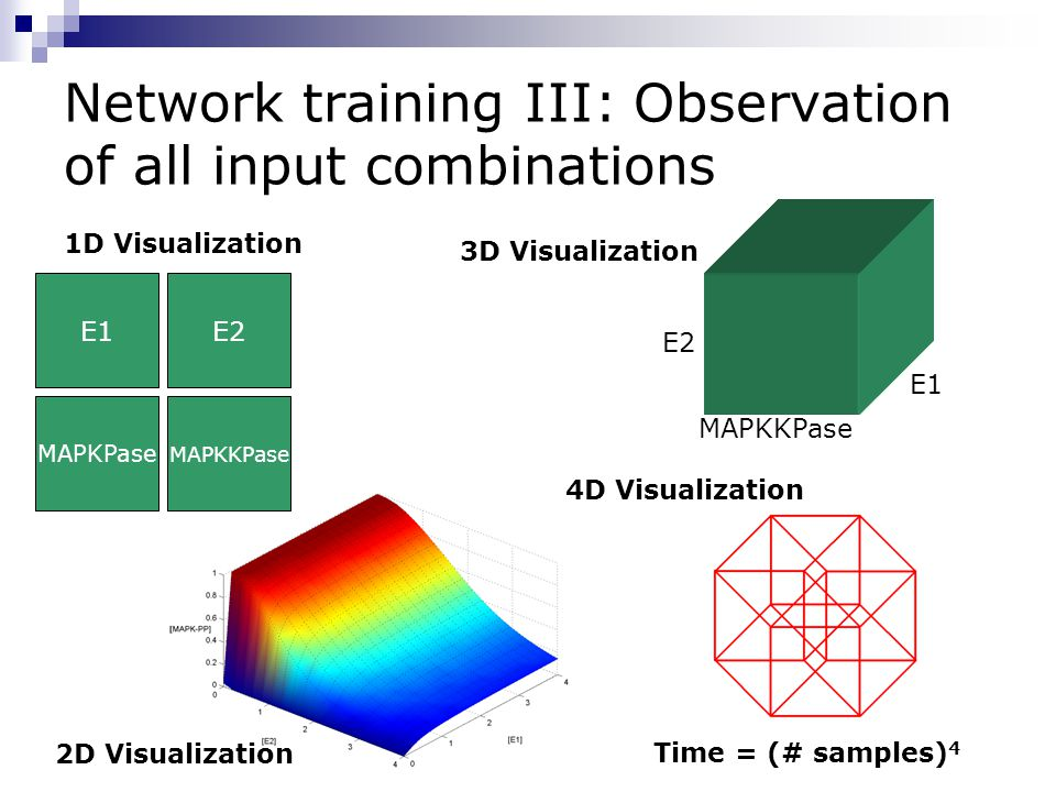 Network training III: Observation of all input combinations E1 MAPKKPase E2 4D Visualization 3D Visualization 2D Visualization Time = (# samples) 4 1D Visualization E2 MAPKPase MAPKKPase