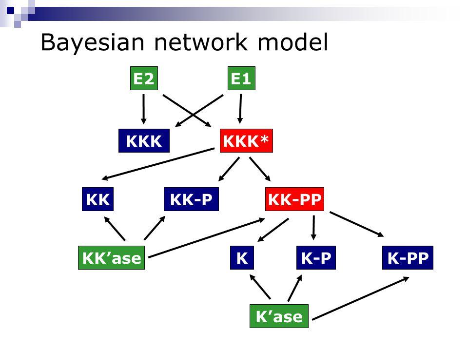 Bayesian network model K-PP KK-PP KKK*KKK E1E2 KKKK-P KK-PKK'ase K'ase