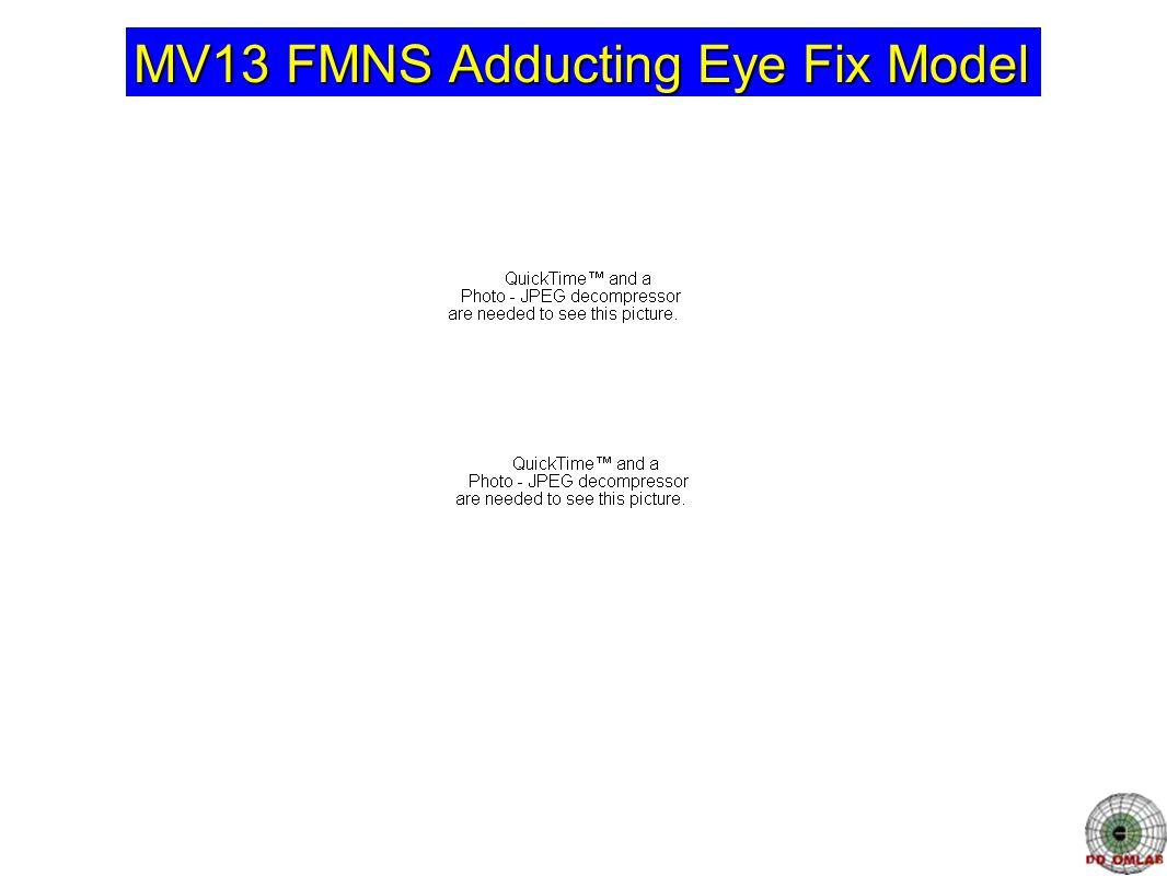 MV13 FMNS Adducting Eye Fix Model