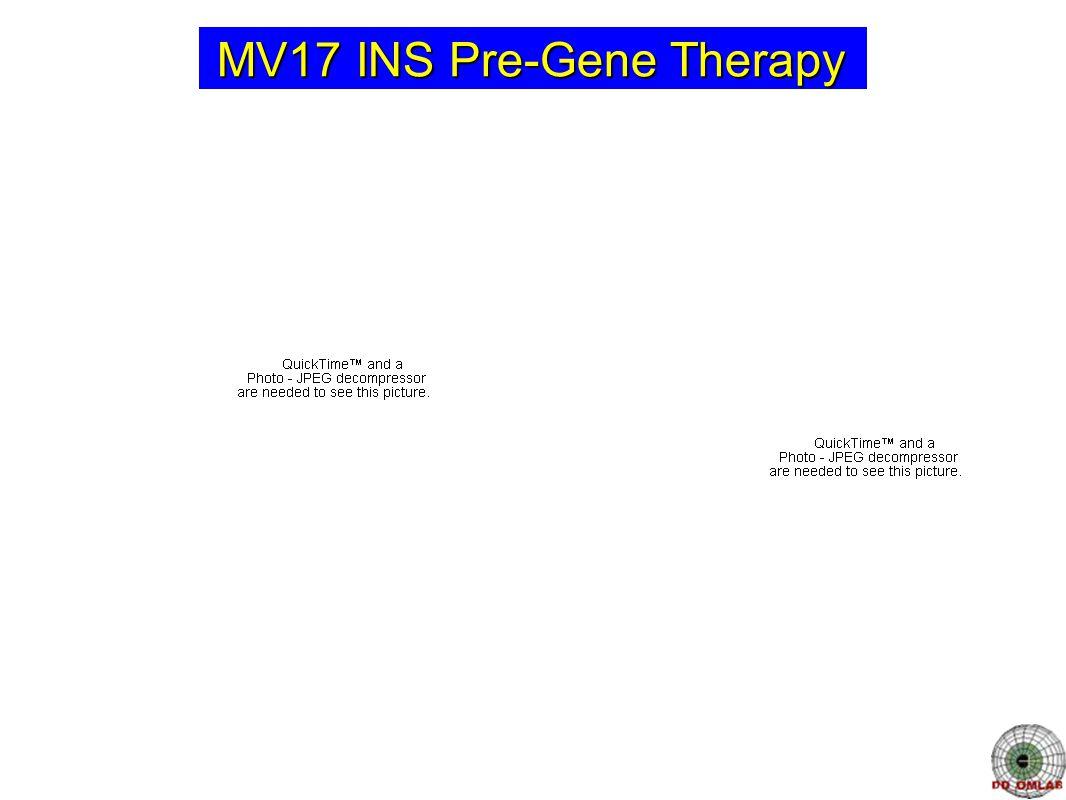 MV17 INS Pre-Gene Therapy
