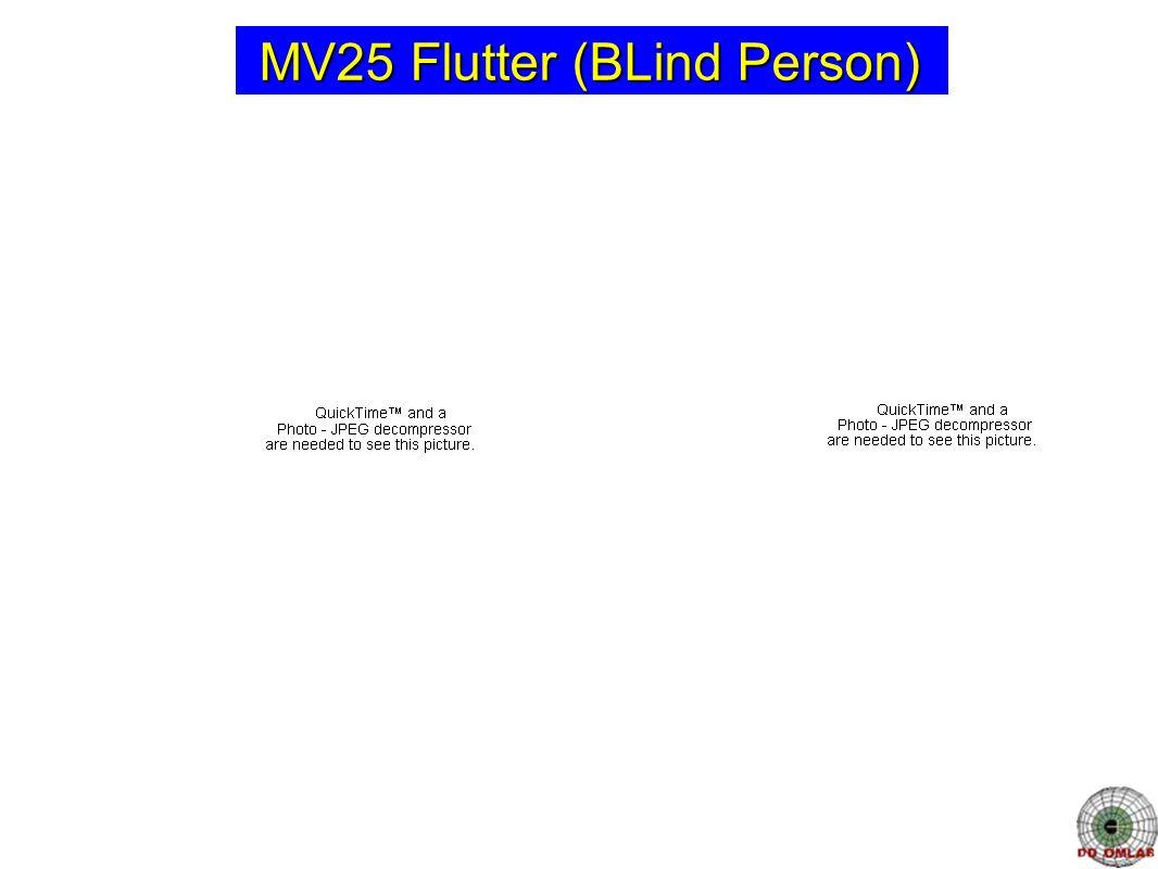 MV25 Flutter (BLind Person)