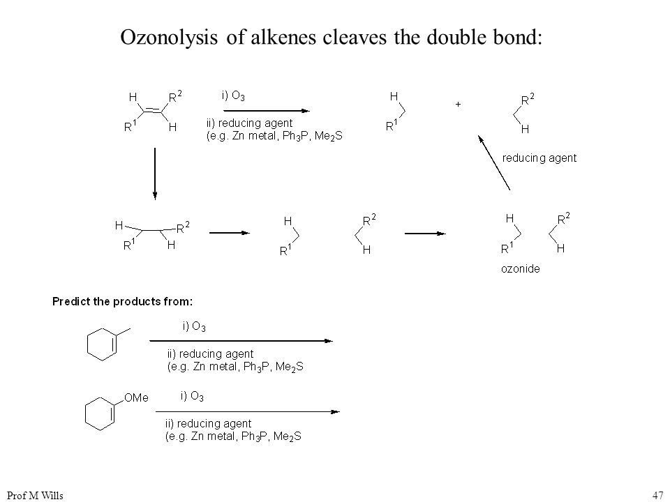 Prof M Wills47 Ozonolysis of alkenes cleaves the double bond: