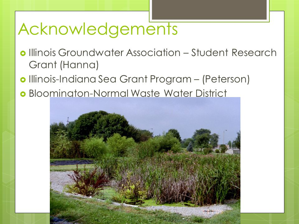 Acknowledgements  Illinois Groundwater Association – Student Research Grant (Hanna)  Illinois-Indiana Sea Grant Program – (Peterson)  Bloomington-Normal Waste Water District