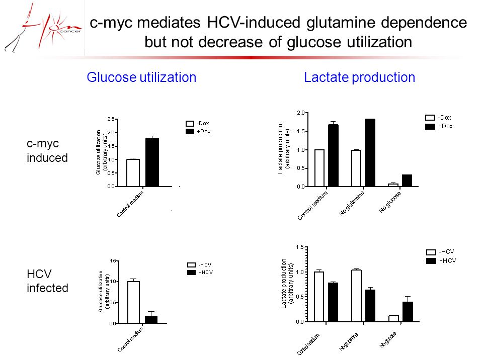 c-myc mediates HCV-induced glutamine dependence but not decrease of glucose utilization Glucose utilizationLactate production c-myc induced HCV infected