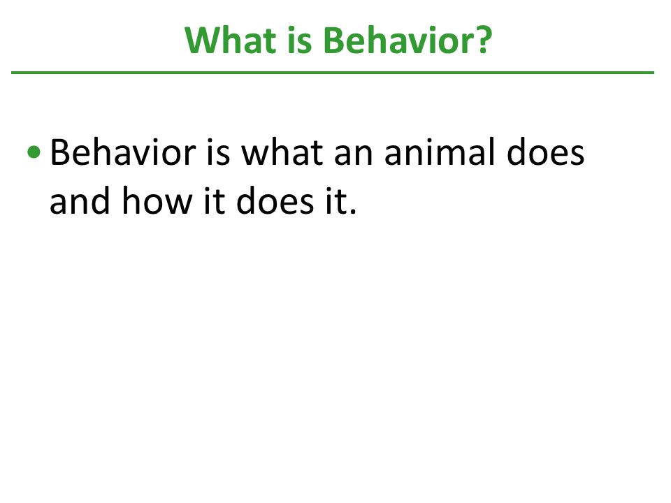 Behavior is what an animal does and how it does it. What is Behavior