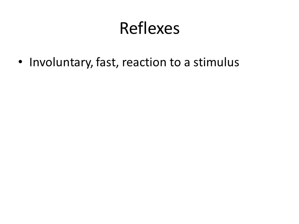 Reflexes Involuntary, fast, reaction to a stimulus