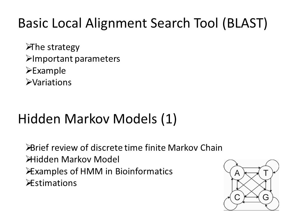 Hidden Markov Models (1)  Brief review of discrete time finite Markov Chain  Hidden Markov Model  Examples of HMM in Bioinformatics  Estimations Basic Local Alignment Search Tool (BLAST)  The strategy  Important parameters  Example  Variations