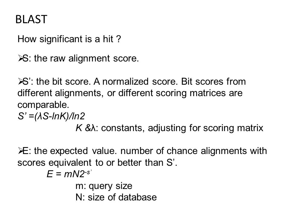 BLAST How significant is a hit .  S: the raw alignment score.