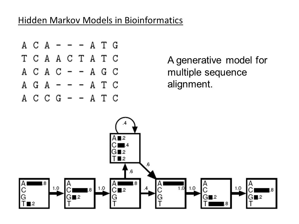Hidden Markov Models in Bioinformatics A generative model for multiple sequence alignment.