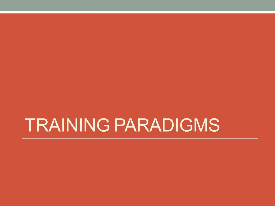 TRAINING PARADIGMS