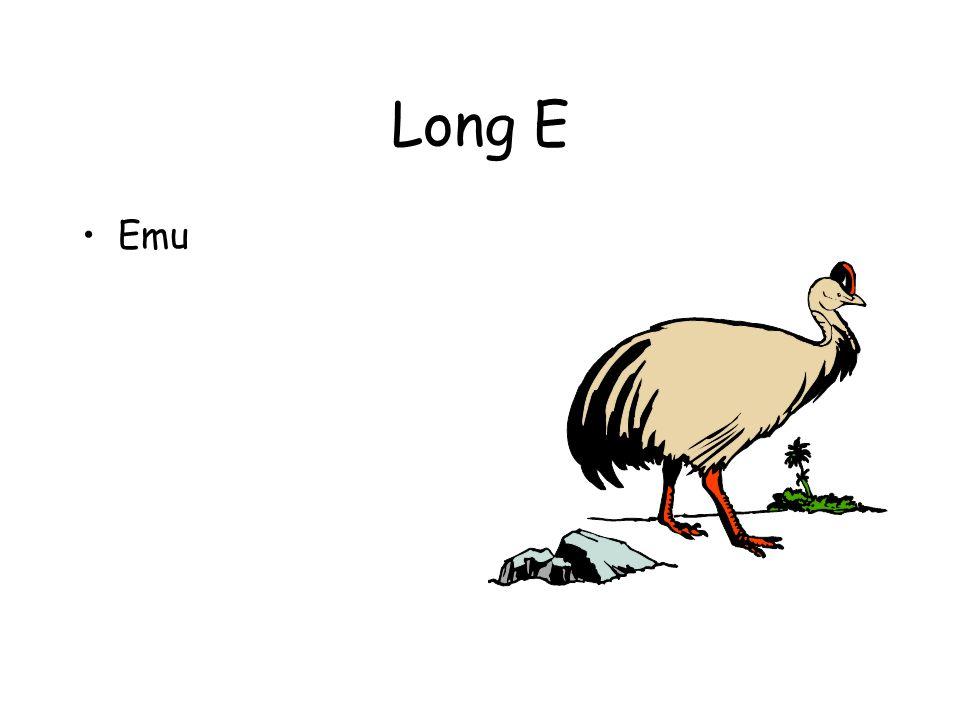 Long E Emu