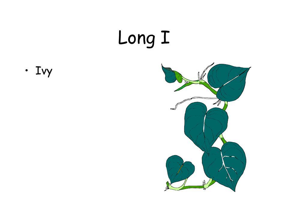 Long I Ivy