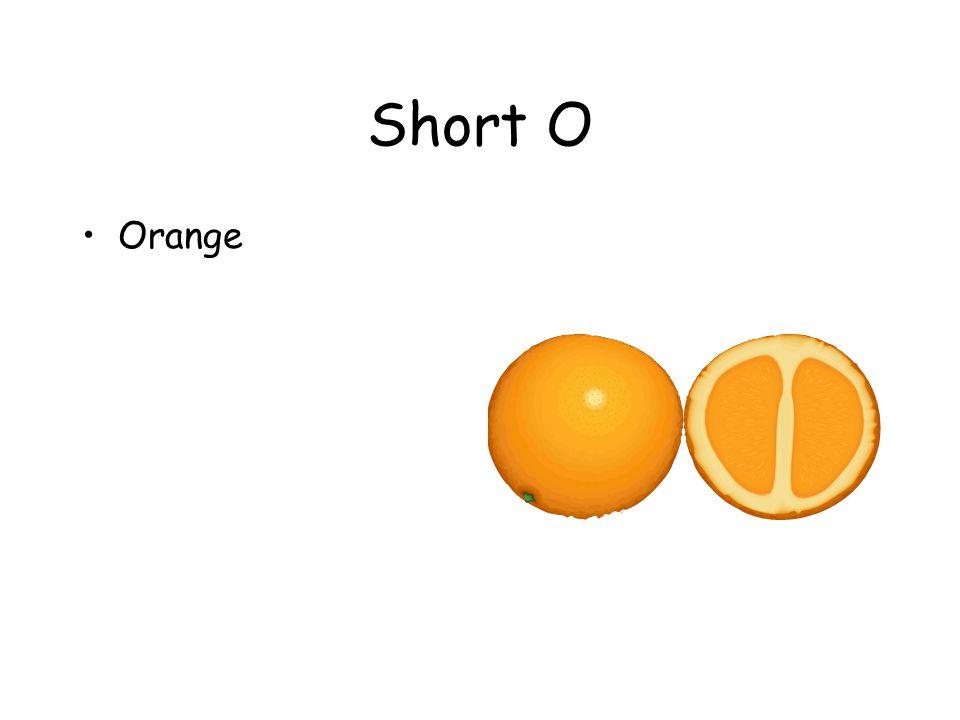 Short O Orange
