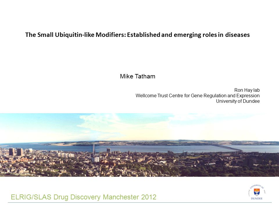 The Small Ubiquitin-like Modifiers: Established and emerging roles in diseases Mike Tatham Ron Hay lab Wellcome Trust Centre for Gene Regulation and Expression University of Dundee ELRIG/SLAS Drug Discovery Manchester 2012