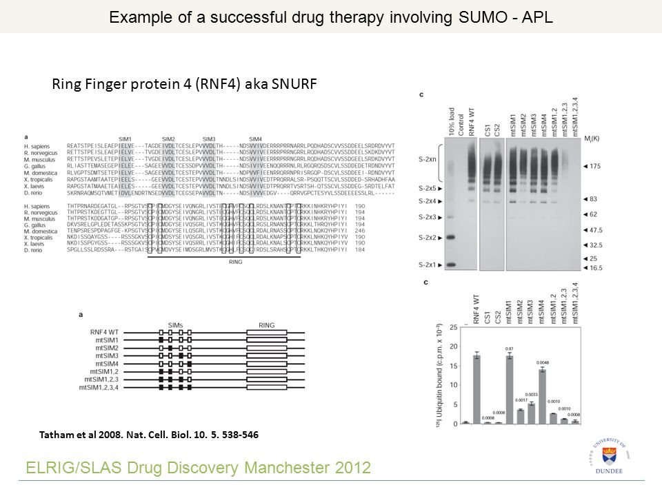 ELRIG/SLAS Drug Discovery Manchester 2012 Example of a successful drug therapy involving SUMO - APL Ring Finger protein 4 (RNF4) aka SNURF Tatham et al 2008.