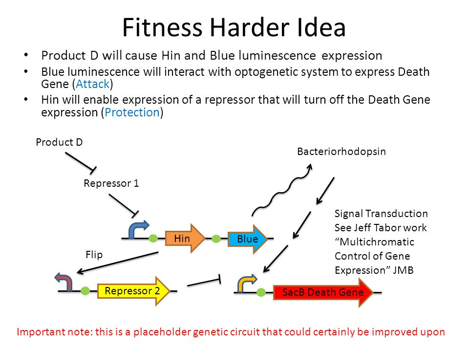 Fitness Harder Idea Product D will cause Hin and Blue luminescence expression Blue luminescence will interact with optogenetic system to express Death