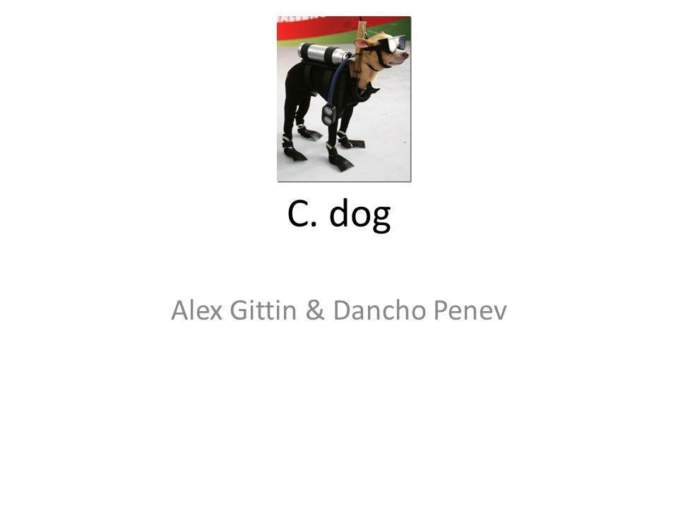C. dog Alex Gittin & Dancho Penev