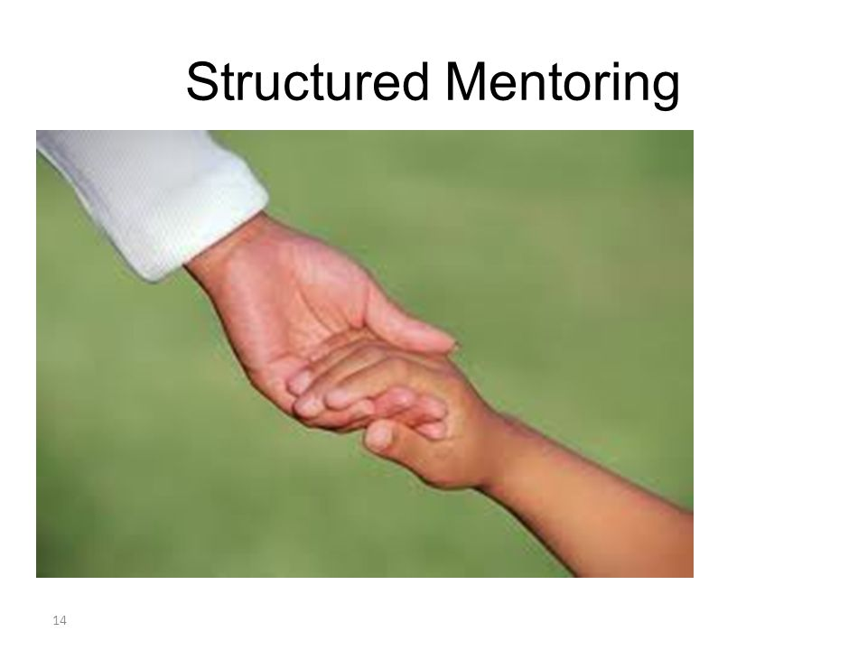 Structured Mentoring 14